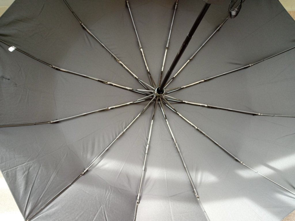 傘の骨組み